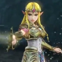 Zelda profile for 'Hyrule Warriors'