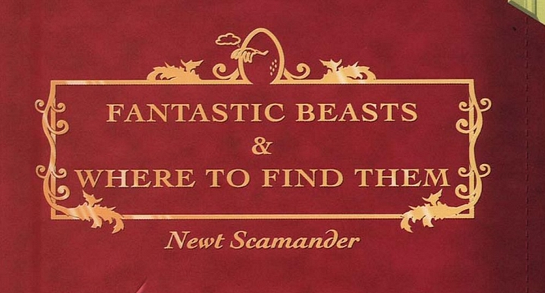 Female Lead Cast In Fantastic Beasts And Where To Find Them