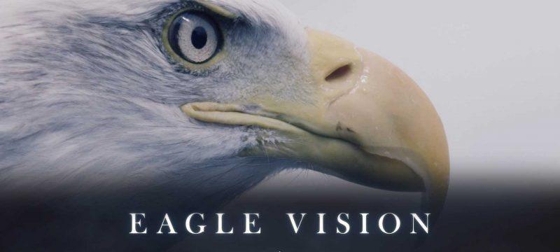 1444905683-eagle-vision
