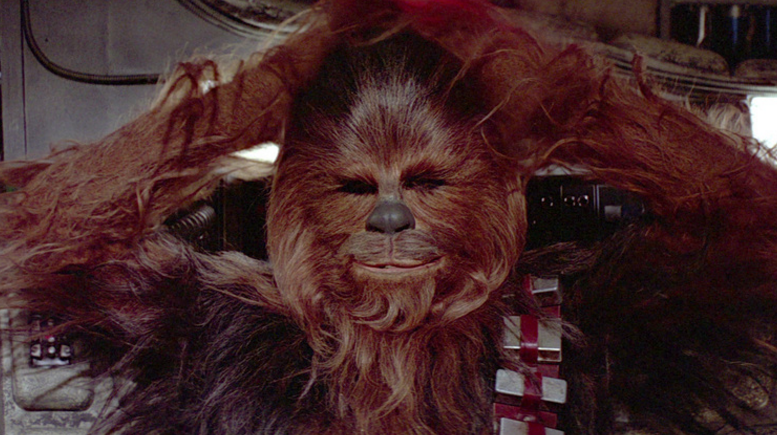 Chewbacca In Court In Ukraine For Not Having ID On Election Day