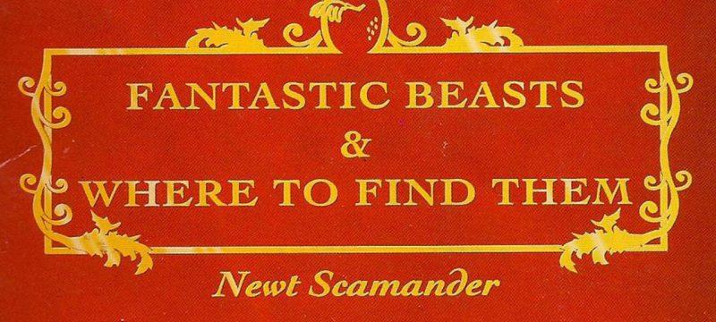 fantasticbeasts-xlarge