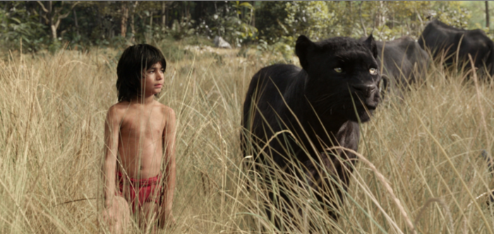 Jungle Book sequel