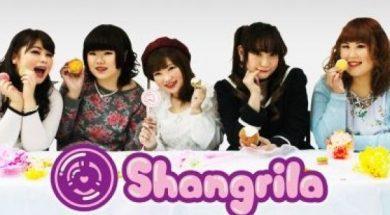 Shangrila.made.cafe