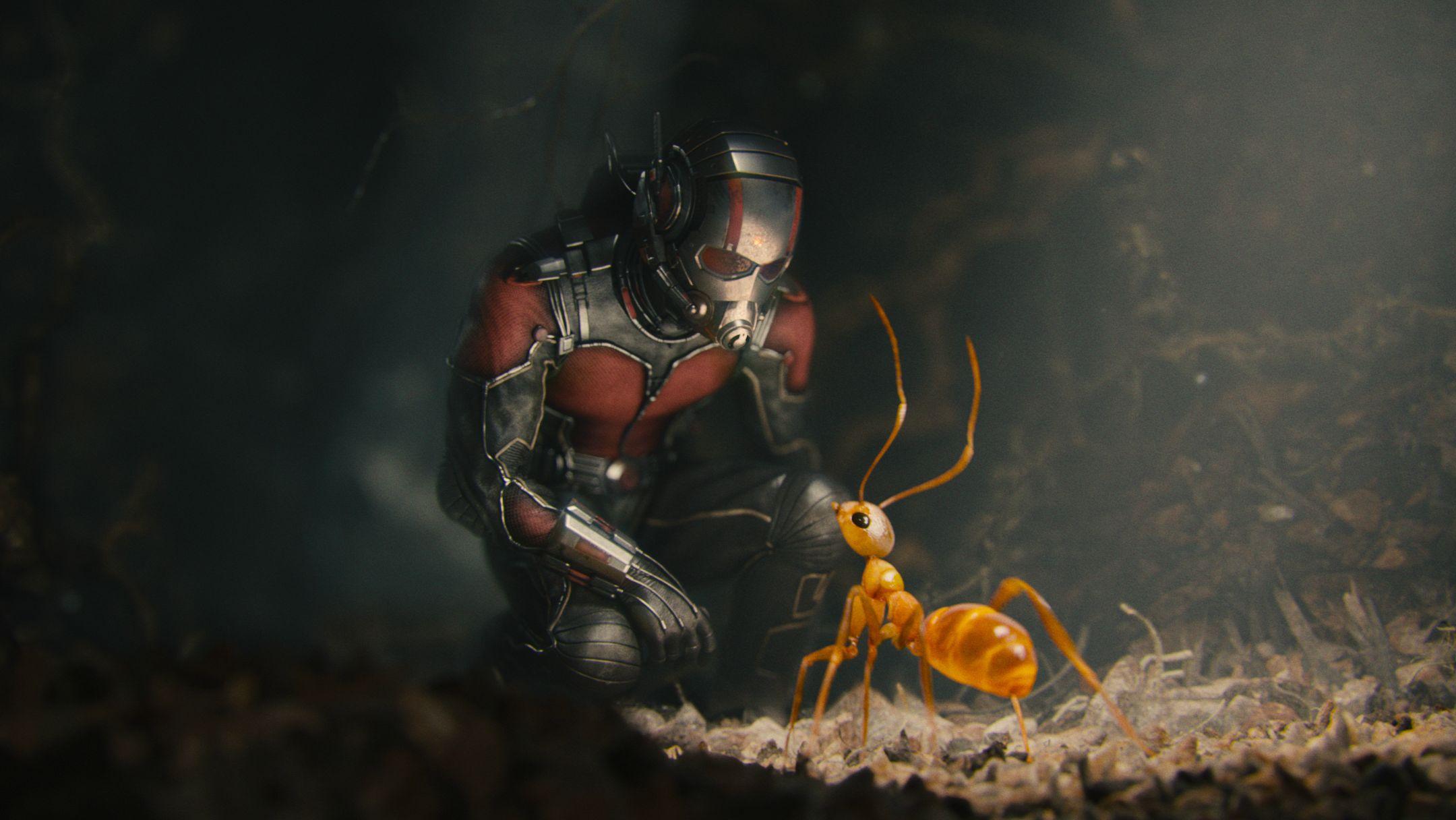 marvel-antman-paul-rudd-scott-lang51