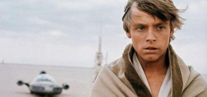 Luke Skywalker's Sexuality