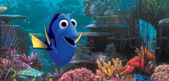 finding.dory