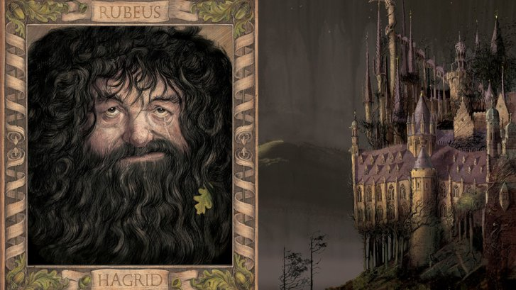 Chamber of Secrets Illustrated editon