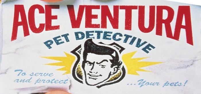 Ace Ventura: Pet Detective – Screen Savers
