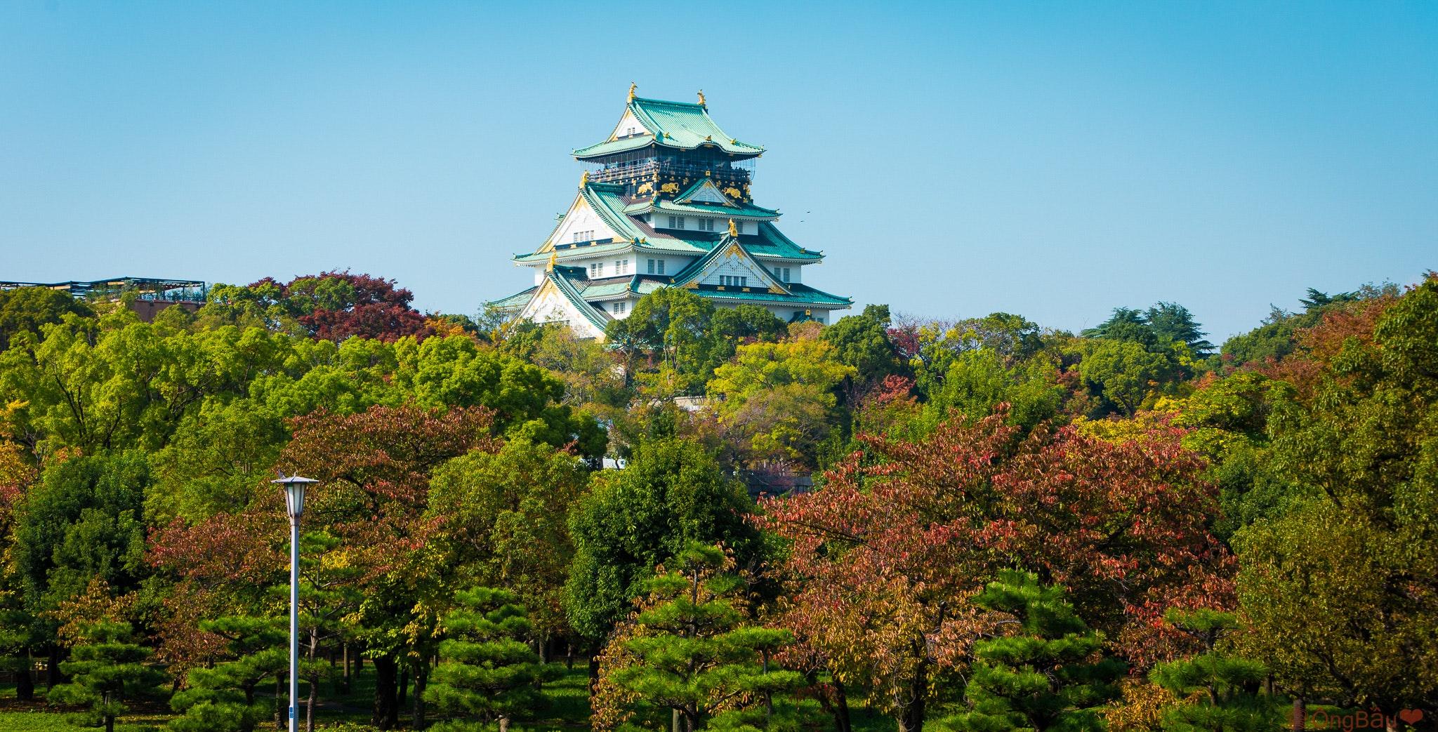 Japanese Honeymoon | Otaku Digest